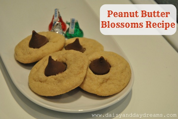 Peanut butterblossoms